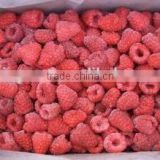 Supply IQF Frozen Raspberry Whole with good quality                                                                         Quality Choice