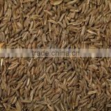 FINE QUALITY CUMIN SEED FROM INDIA