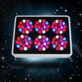 Super Power Grow Light With Full Spectrum