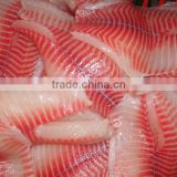 frozen fish organic tilapia fillet price best selling products