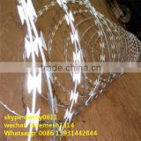 Factory Supply Razor Blade Barbed Wire, Razor Wire For Sale, Fake Razor Wire---------TC35A