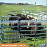 Australia hot dipped galvanized cattle pens In Farm (Factory Trade Assurance)