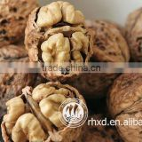 chinese bulk walnut in shell