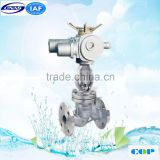 pn16 pn40 Casted iron hand wheel control Globe valve for oil and gas industry