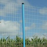 PVC Coated Euro Fence/Wire Fencing/Euro Welded Fence/Electro Welded Wire Mesh