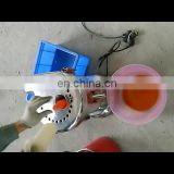Fruit and vegetable juicer for sale electric carrot juicer orange juicer making machine