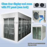 Glass door display cool room with PU panel (cam lock)