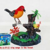 Battery Operated bird toy PAF886A