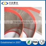 Filter Mesh Application fiberglass mesh fabric, teflon mesh conveyor belt for drying use