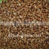 Buckwheat Rice New Crop 2011