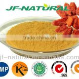 food grade dried fruit powder goji powder Certificated with US GMP, KOSHER, HALAL, ISO, HACCP