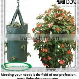 Wholesale PE Hanging Tomato Planter Bag,Pouch Grow bag,Grow Fruit Strawberries Herbs Flowers