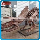 Playground Equipment Artificial Museum Quality Dinosaur Fossil