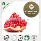 Top quality fresh pomegranate concentrate fruit powder pomegranate powder