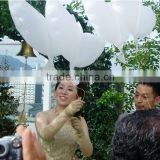 2016 Wedding Helium Inflatable Biodegradable White Dove Balloons For Wedding Decoration Doves Dhaped Bio Balloons                                                                         Quality Choice