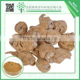 Hot selling 2015 high purity maca extract powder 4:1