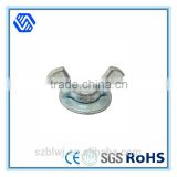 Hot Sale Surprise Price Flange Butterfly Wing Nut with Bolt