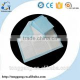 Economic Disposable Adult Incontinence Pants Absorbent Pads