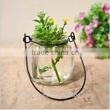Pumpkin Shape Glass Vase Bottle for plant With Metal Handle Candle Hydroponic/Home Decoration