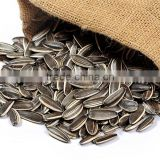 INQUIRY about Sunflower seed 5009 price