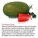 INquiry about Charleston Grey Hybrid Watermelon Seeds