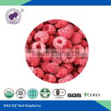 IQF red raspberry black raspberry frozen fruit