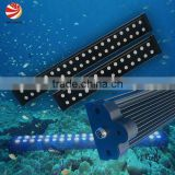 aquarium coral reef tank led grow light