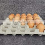 Inquiry about Egg Tray