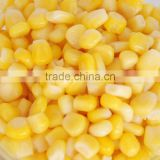 Thailand Origin Canned Sweet Corn