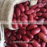 Heilongjiang Red Kidney Beans british type