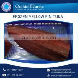 Frozen Delicious/ Healthy Whole Round Yellowfin Tuna in Eco Friendly Packaging
