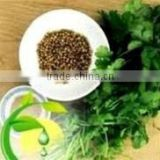 Natural & herbal Coriander Seed Essential Oil