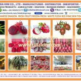 RED DRAGON FRUIT - NATURAL 100% PURE VIETNAM - IQF USED ALOEVERA - BIRD CHILI - MULBERRY - TIDA KIM ORIGIN PRODUCTION