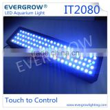 240W LED Aquarium Fish Tank Lamp Reef Live Coral LED Hood Blue White Grow Lights Led Aquarium Lights Evergrow IT2080