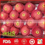 Red crispy fresh fuji apple for wholesale