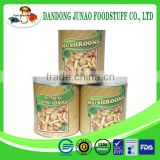 Supply Canned whole nameko button mushroom