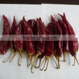 2015 Best Selling Indian Dry Red Chilli Buyer