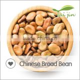 Good Quality Dried Broad Bean