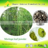 High Quality Moringa Leaves Powder Supplier From India/Malunggay extract5:1 10:1/Drumstick Leaf Powder                                                                         Quality Choice