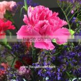 Fresh Cut Flower Buyer Purple Carnation Flower Arrangement From Kunming Superbly Carnation Flowers