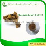 Free sample Chaga Mushrom extract/Polysaccharide/Mushroom extract/Trierpene/Anti-tumours