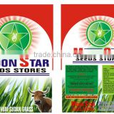 Moon Star Hybrid Sorghum Sudan Grass Seeds