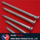 China concrete nails