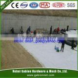 foundation waterproofing membrane with geo-textile