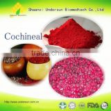 Cochineal 1206-17-9 carminic acid colorant used in food pharmaceutical cosmetic paint