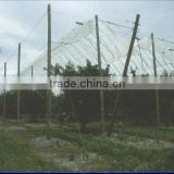 pe woven fabric waterproof tarpaulin for plastic greenhouse and agricultural ,farm ,fruit orchard rain cover