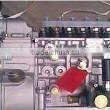 Bosch Machinery injection pump 6 cylinder 0402066702 in stock