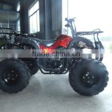 New quad bike 4 wheelers for kids 125cc chain drive cheap hot sale