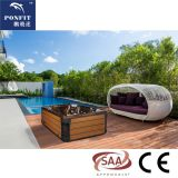 5 persons SAA CE approved hot tub balboa swim spa with HDTV