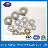 Zinc Plated SN70093 Contact Washer with ISO
